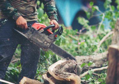Daniel Leiritz Paysagiste - Entretien coupe de bois bûcheronnage ©Rawpixel/Freepik