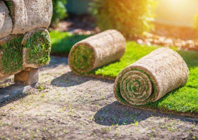 Daniel Leiritz Paysagiste - Création conception entretien parc jardin pelouse rouleaux de gazon ©Welcomia/Freepik